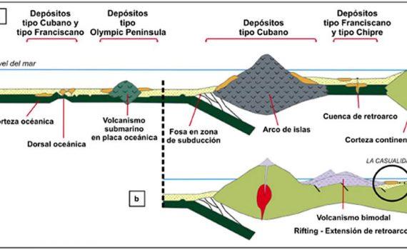 Genética de mineralización