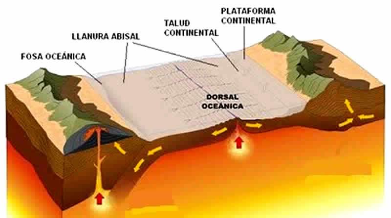Rift - Dorsal Oceanica