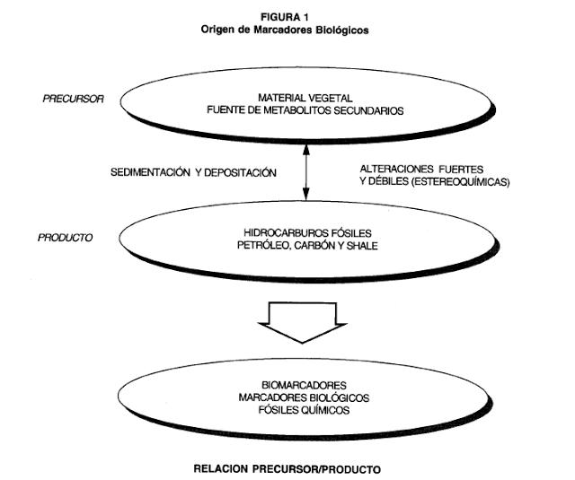Origen de Biomarcadores Biológicos